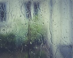 How to Clean Mold From Windows